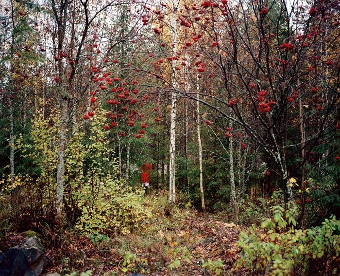 Autumn, 2007