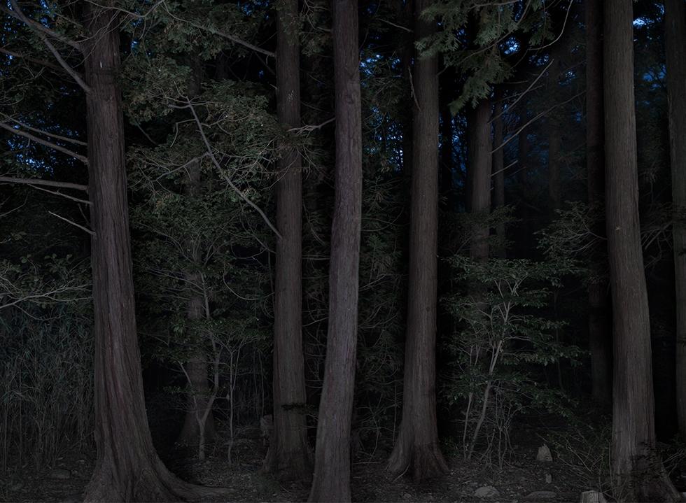 Taejoong Kim: Foresta #07, 2013